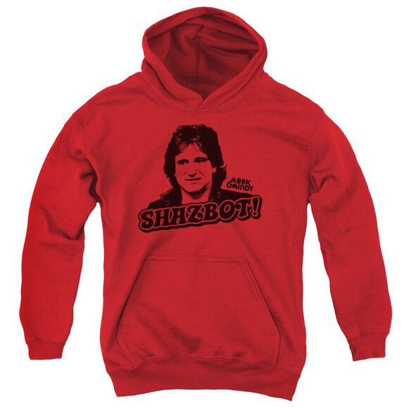 Mork & Mindy Shazbot Youth Pull Over Hoodie