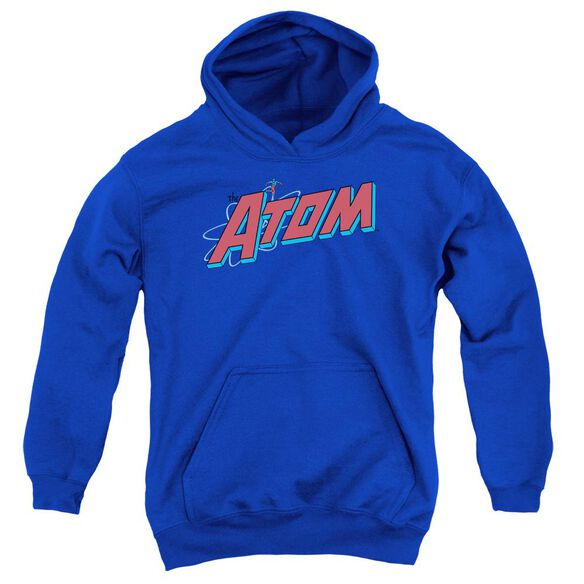 Dc The Atom Youth Pull Over Hoodie