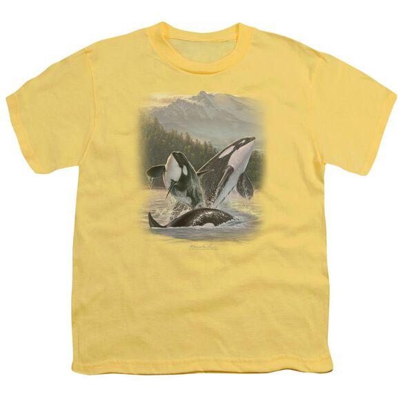Wildlife Breaching Orcas Short Sleeve Youth T-Shirt