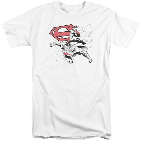 Superman Double The Power Short Sleeve Adult Tall T-Shirt