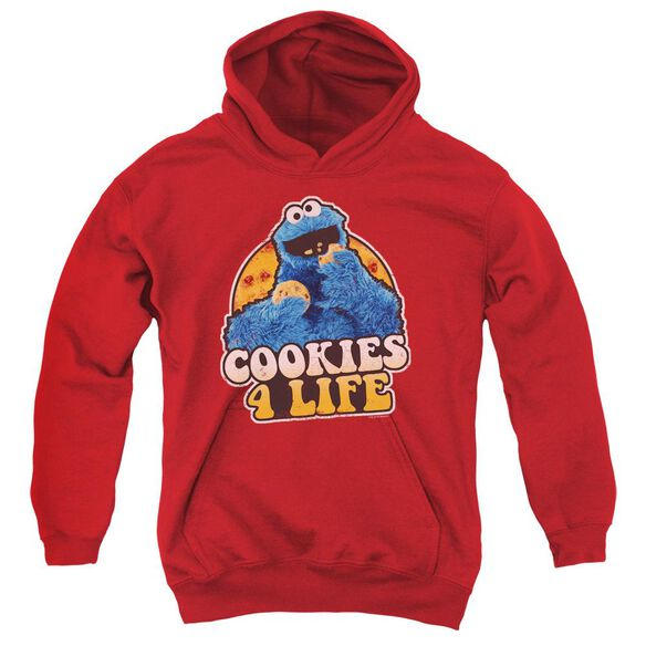 Sesame Street Cookies 4 Life Youth Pull Over Hoodie
