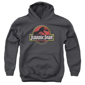 Jurassic Park Stone Logo-youth Pull-over Hoodie