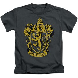 Harry Potter Gryffindor Crest Short Sleeve Juvenile Charcoal T-Shirt