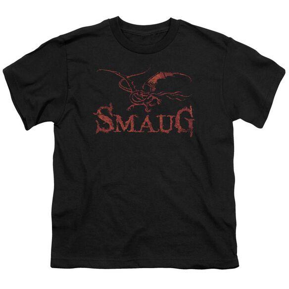 Hobbit Dragon Short Sleeve Youth T-Shirt