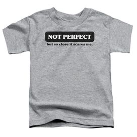 Not Perfect Short Sleeve Toddler Tee Athletic Heather T-Shirt