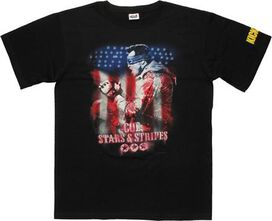 Kick Ass 2 Colonel Stars and Stripes T-Shirt