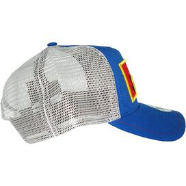 Superman Framed Logo Mesh Hat