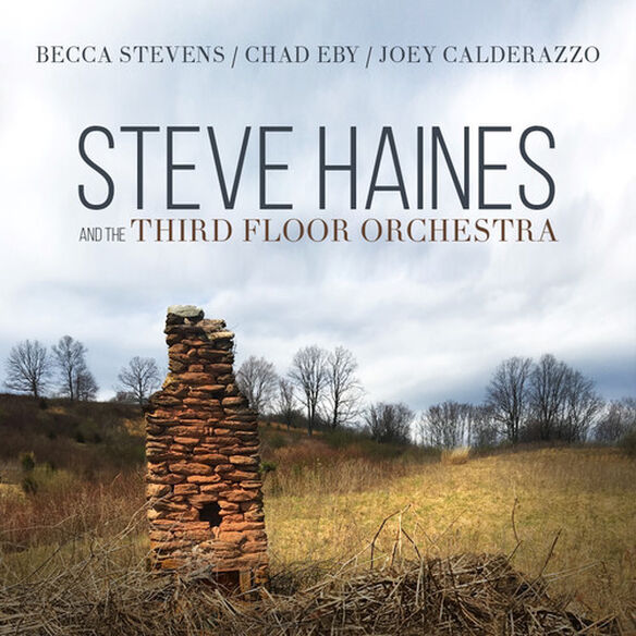 Steve Haines & Third Floor Orchestra - Steve Haines And The Third Floor Orchestra