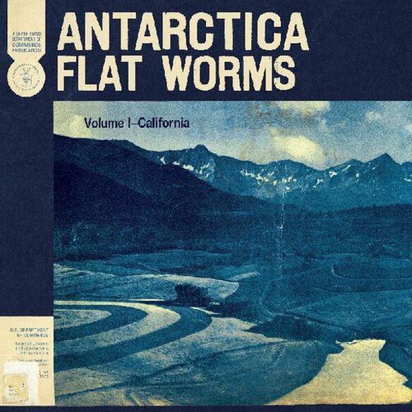 Flat Worms - Antarctica