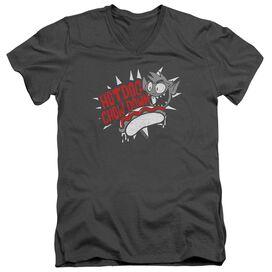 Teen Titans Go Hot Dog Short Sleeve Adult V Neck T-Shirt
