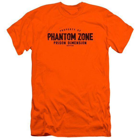 Superman Phantom Zone Premuim Canvas Adult Slim Fit