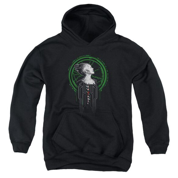 Star Trek Borg Queen Youth Pull Over Hoodie