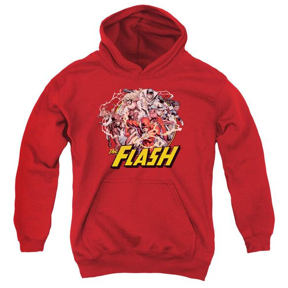 Jla Flash Family Youth Pull Over Hoodie
