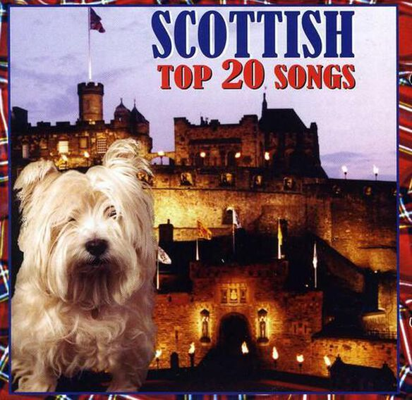 Scottish Top 20 Songs / Various