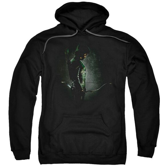 Arrow In The Shadows Adult Pull Over Hoodie