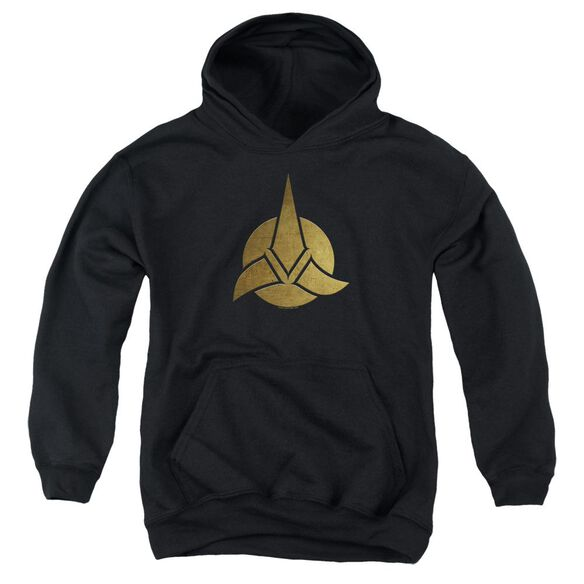 Star Trek Discovery Discovery Triquentra Youth Pull Over Hoodie