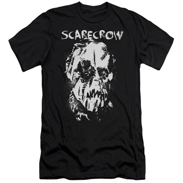 Batman Begins Scarecrow Face Short Sleeve Adult T-Shirt