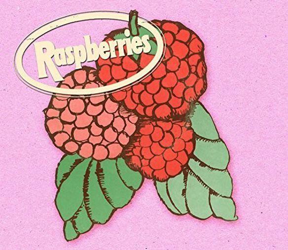 The Raspberries - Classic Album Box Set