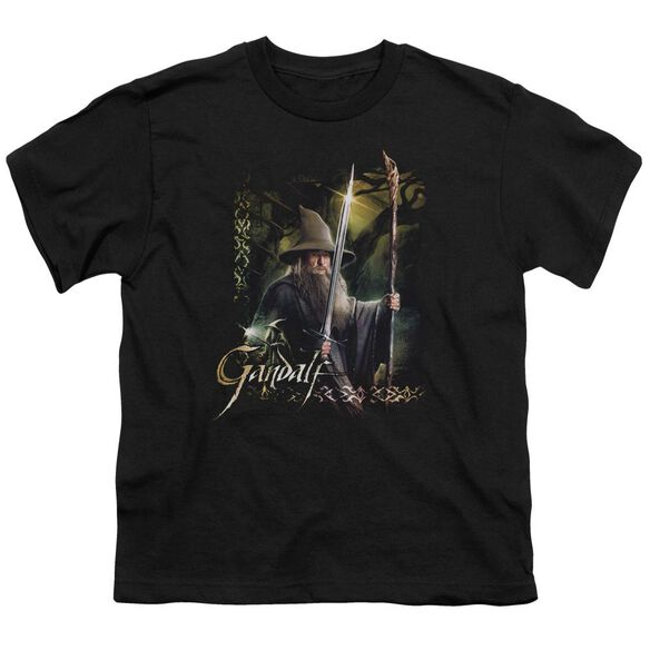 Hobbit Sword And Staff Short Sleeve Youth T-Shirt