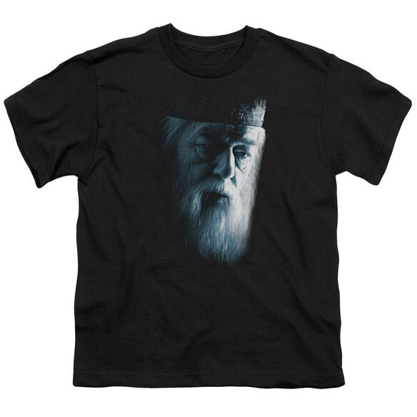 Harry Potter Dumbledore Face Short Sleeve Youth T-Shirt