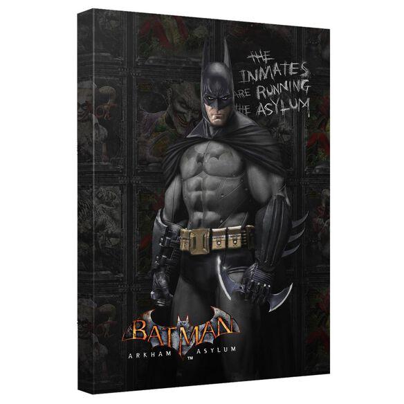 Batman Arkham Asylum Arkham Inmates Quickpro Artwrap Back Board