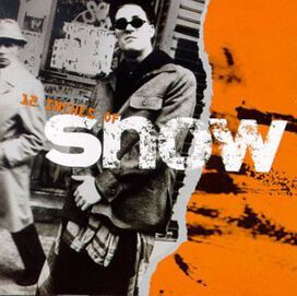 The Snow - 12 Inches of Snow