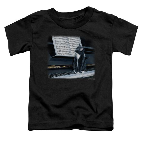 Wildlife Kitten On The Keys Short Sleeve Toddler Tee Black T-Shirt