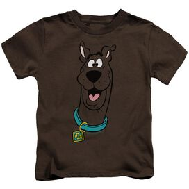 Scooby Doo Scooby Doo Short Sleeve Juvenile T-Shirt