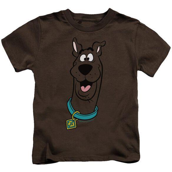 Scooby Doo Scooby Doo Short Sleeve Juvenile T-Shirt