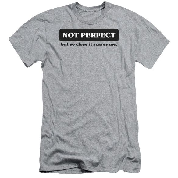 Not Perfect Short Sleeve Adult Athletic T-Shirt
