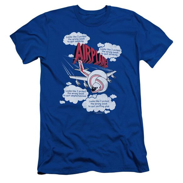 Airplane Picked The Wrong Day Short Sleeve Adult Royal T-Shirt