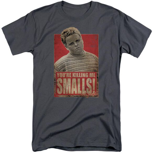 Sandlot Smalls Short Sleeve Adult Tall T-Shirt