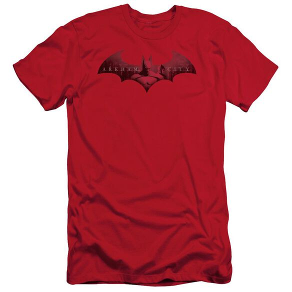 Arkham City In The City Short Sleeve Adult T-Shirt