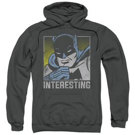 Dc Interesting Adult Pull Over Hoodie