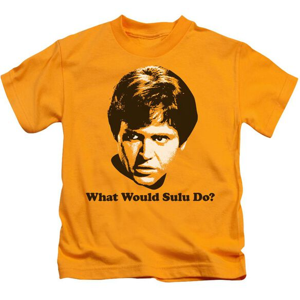 Star Trek What Would Sulu Do Short Sleeve Juvenile Gold T-Shirt