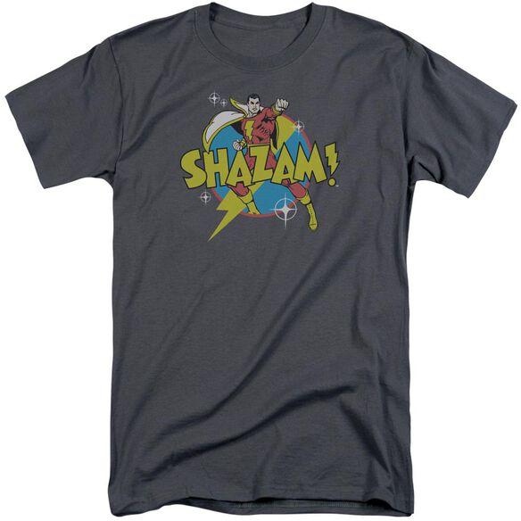 Dc Power Bolt Short Sleeve Adult Tall T-Shirt