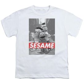 Sesame Street Sesame Short Sleeve Youth T-Shirt
