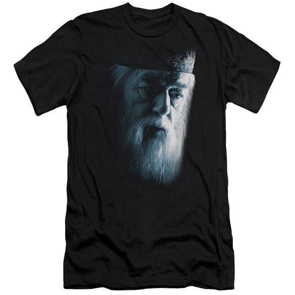 Harry Potter Dumbledore Face Hbo Short Sleeve Adult T-Shirt
