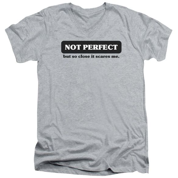 Not Perfect Short Sleeve Adult V Neck Athletic T-Shirt