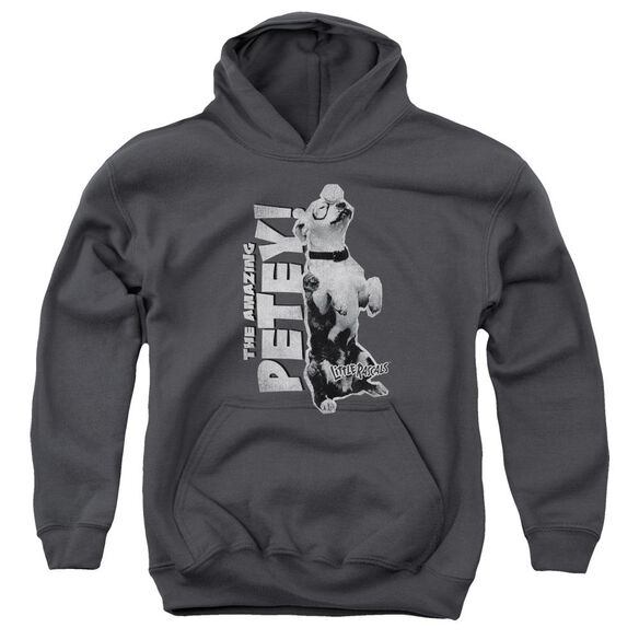 Little Rascals Amazing Petey Youth Pull Over Hoodie
