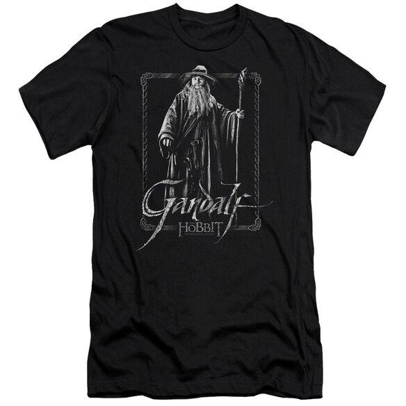 The Hobbit Gandalf Stare Short Sleeve Adult T-Shirt