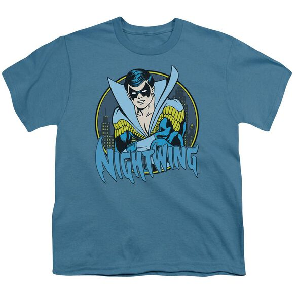 Dc Nightwing Short Sleeve Youth T-Shirt