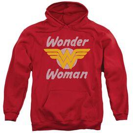 Dc Wonder Wings Adult Pull Over Hoodie