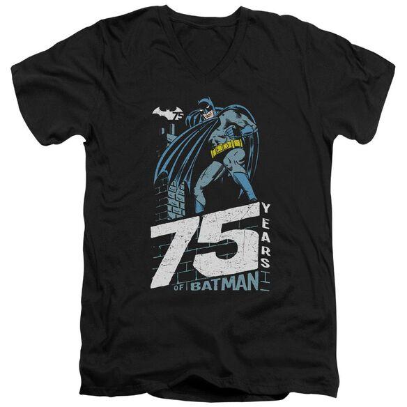 Batman Rooftop Short Sleeve Adult V Neck T-Shirt