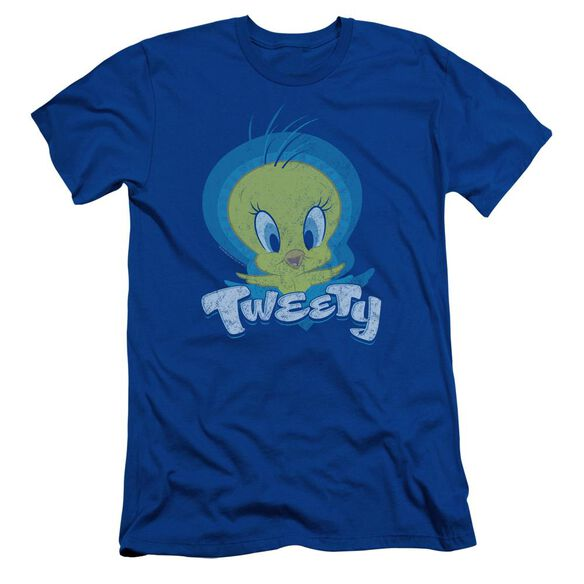 Looney Tunes Tweety Swirl Short Sleeve Adult Royal T-Shirt