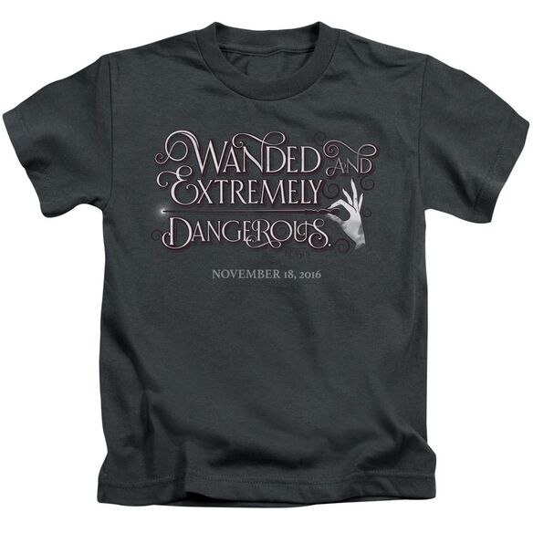 Fantastic Beasts Wanded Short Sleeve Juvenile T-Shirt