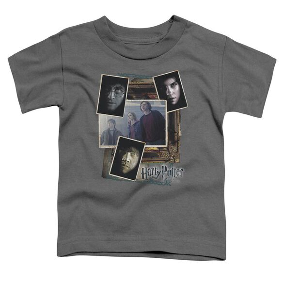 Harry Potter Trio Collage Short Sleeve Toddler Tee Charcoal T-Shirt