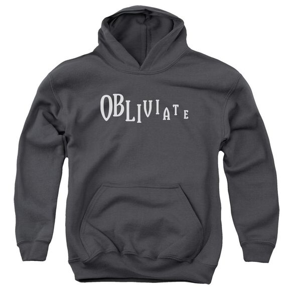 Harry Potter Obliviate Youth Pull Over Hoodie