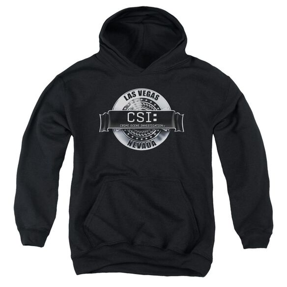 Csi Rendered Logo Youth Pull Over Hoodie