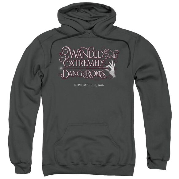 Fantastic Beasts Wanded Adult Pull Over Hoodie